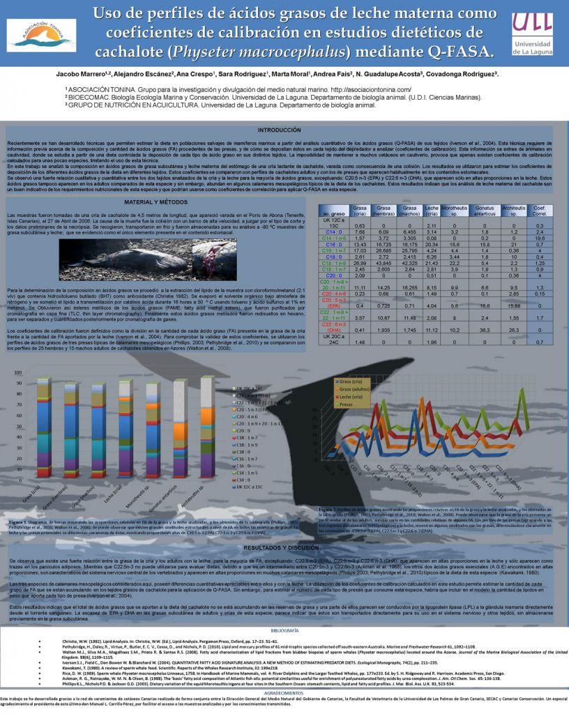 Poster dieta de cachalote